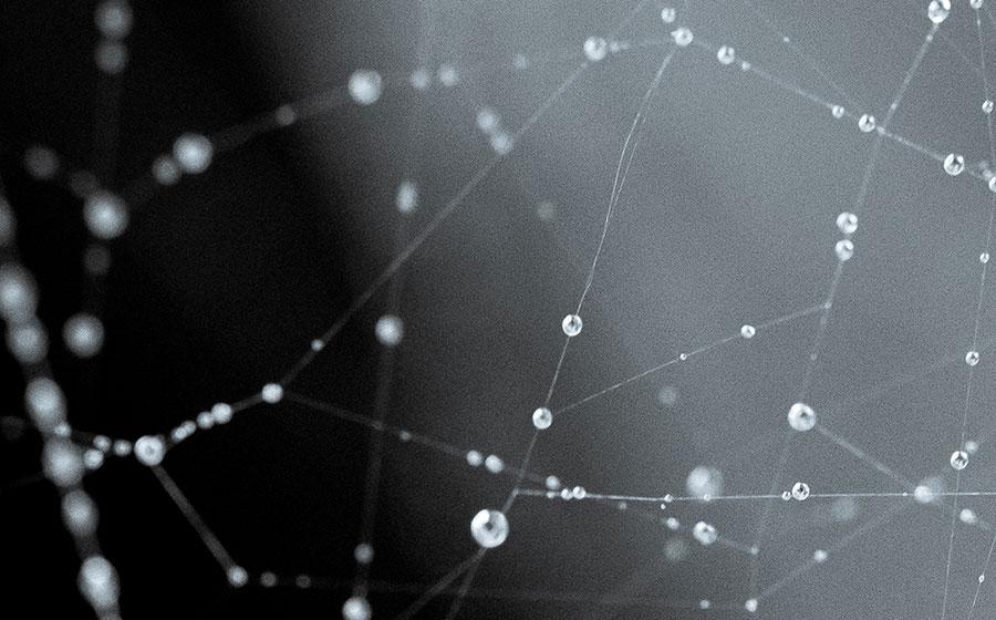 Fönstret mot nätet – webbläsarens historia
